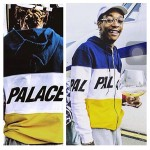 Palace Space Panel Hoodie (Multicolor)